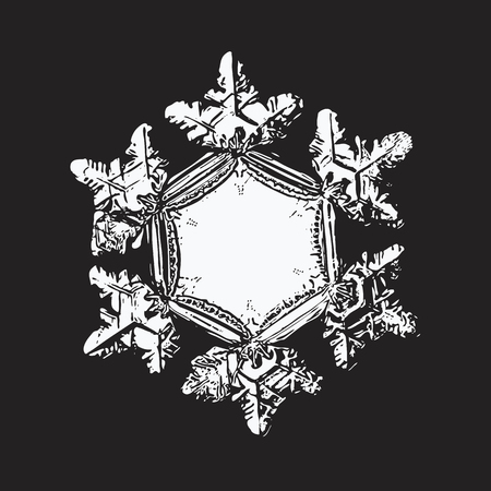 White snowflake on black background. This vector illustration based on macro photo of real snow crystal: beautiful star plate with six short, relief arms and large, flat and empty central hexagon.