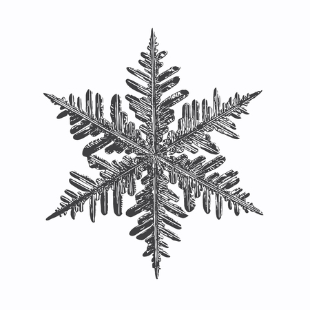 Black snowflake on white background. This vector illustration based on real snow crystal macro photo: large stellar dendrite with fine hexagonal symmetry, complex structure and elegant shape.
