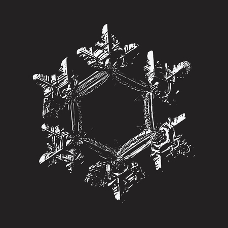 White snowflake on black background. This vector illustration based on macro photo of real snow crystal: beautiful star plate with six short, relief arms and large, flat and empty central hexagon. Illustration