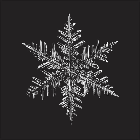 White snowflake on black background. This vector illustration based on real snow crystal macro photo: large stellar dendrite with fine hexagonal symmetry, complex structure and elegant shape. Illustration