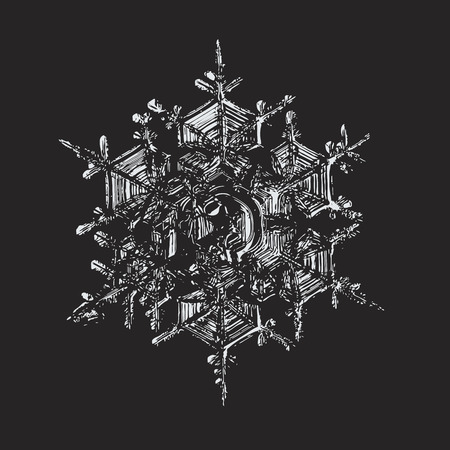 This vector illustration based on macro photo of real snowflake: large stellar dendrite snow crystal with six broad arms, complex internal structure and glossy relief surface. Illustration