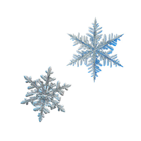 Two snowflakes isolated on white background. Macro photo of real snow crystals: beautiful stellar dendrites with elegant, ornate shapes, relief surface, fine hexagonal symmetry and complex structure. Stock Photo