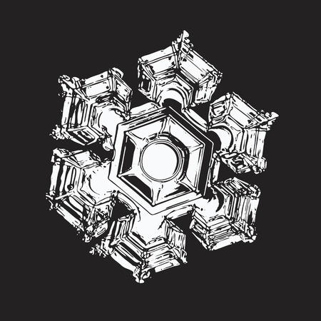 White snowflake on black background. This vector illustration based on macro photo of real snow crystal: elegant star plate with six short, broad arms and large, relief hexagon in the center.
