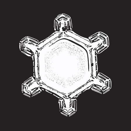 Snowflake on black background. This vector illustration based on macro photo of real snow crystal: simple star plate with short arms and large, flat central hexagon with ring pattern of tiny dots.