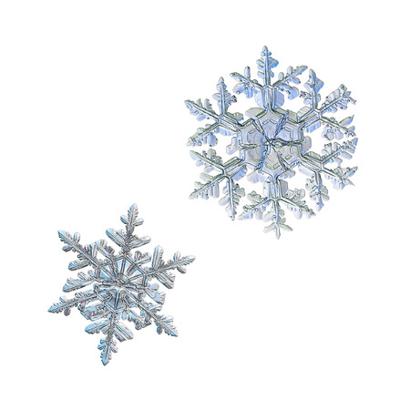 Two snowflakes isolated on white background. Macro photo of real snow crystals: big stellar dendrites with elegant, ornate shapes, glossy relief surface, fine hexagonal symmetry and complex structure.