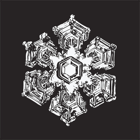White snowflake on black background. This vector illustration based on macro photo of real snow crystal: large star plate with fine hexagonal symmetry, six short, broad arms and complex inner details.
