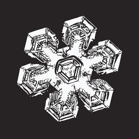 White snowflake on black background. This vector illustration based on macro photo of real snow crystal: massive star plate with short broad arms, triangular center, fine symmetry and complex details.
