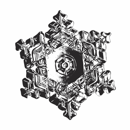 Black snowflake on white background. This vector illustration based on macro photo of real snow crystal: beautiful star plate with fine hexagonal symmetry, six short, broad arms and relief surface.