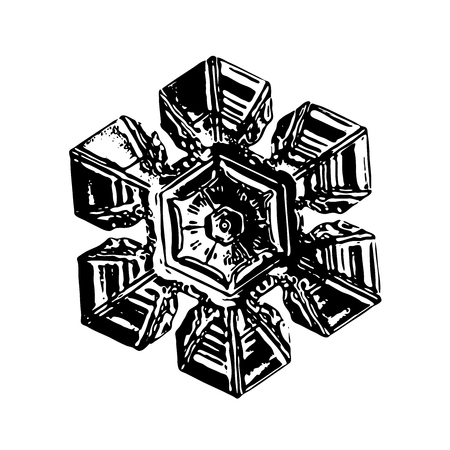 Black snowflake on white background. This illustration based on macro photo of real snow crystal: beautiful star plate with hexagonal symmetry, six short broad arms and complex inner pattern. Stock Photo