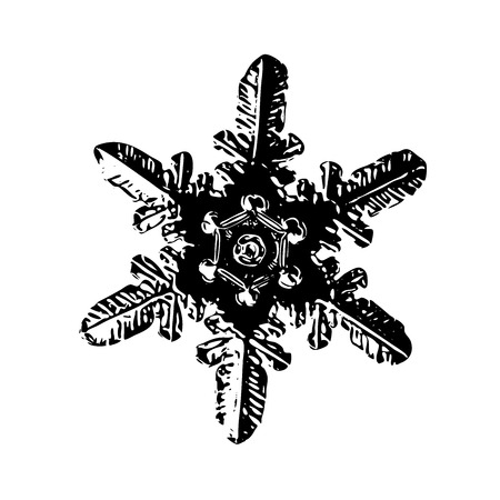 Snowflake on white background. This illustration based on macro photo of real snow crystal: small stellar dendrite with simple, straight arms and unusual ring pattern around hexagonal center.