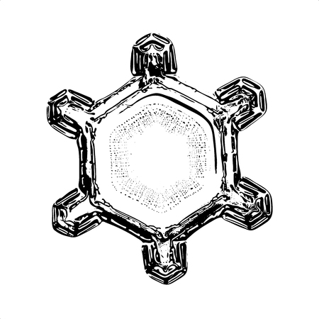 Snowflake on white background. This illustration based on macro photo of real snow crystal: simple star plate with short arms and large, flat central hexagon with ring pattern of tiny dots.