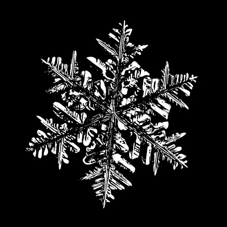 This illustration based on macro photo of real snowflake: large stellar dendrite snow crystal with fine hexagonal symmetry, complex ornate shape and six long, elegant arms with side branches. Stock Photo