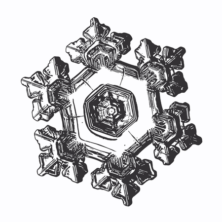 Snowflake on white background. This vector illustration based on macro photo of real snow crystal: large star plate with fine hexagonal symmetry, six short, broad arms and complex inner details.