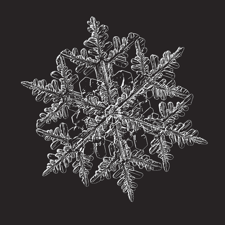 Snowflake isolated on black background. This vector illustration based on macro photo of real snow crystal: beautiful stellar dendrite with hexagonal symmetry, complex shape and six elegant arms. Illustration