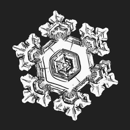 White snowflake on black background. This vector illustration based on macro photo of real snow crystal: small star plate with six short, broad arms, relief surface and complex inner structure.