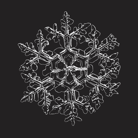 Snowflake isolated on black background. This vector illustration based on macro photo of real snow crystal: complex stellar dendrite with fine hexagonal symmetry, ornate shape and thin, elegant arms.