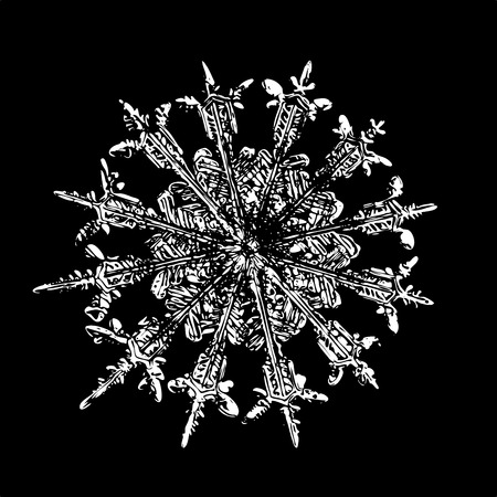 White snowflake on black background. This illustration based on macro photo of real snow crystal: rare specimen with twelve thin, elegant arms, fine symmetry and complex inner structure.