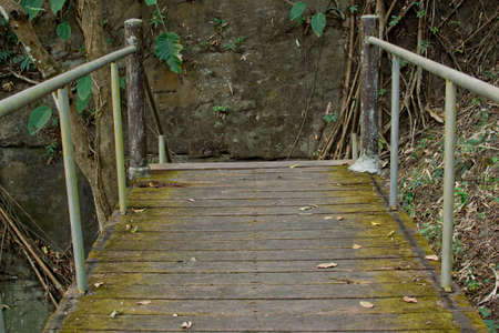 Staircase in   forest photo