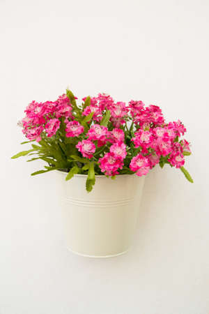 artificial  flower in pot