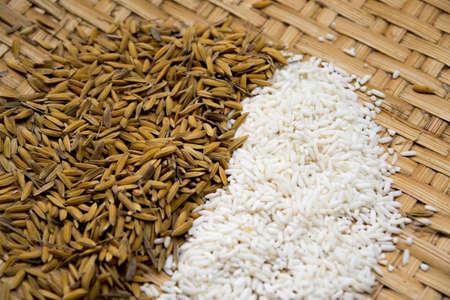 paddy jasmine and rice on bamboo  background