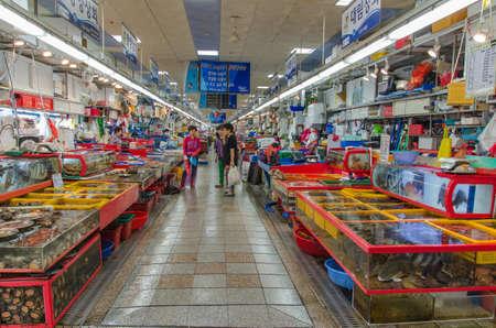 BUSAN, SOUTH KOREA - JUNE 22 Jagalchi Fish Market on June 22, 2014, Busan, South Korea  Fishing is an important industry in Busan  Editorial
