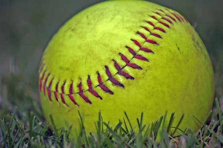 softball: softball in grass
