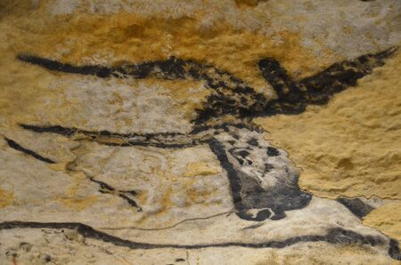 Bull cave painting prehistoric cave of Lascaux. Stock Photo