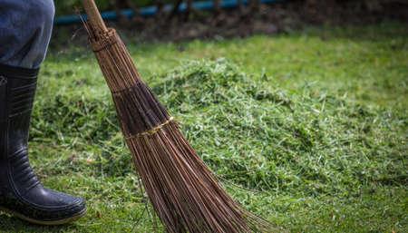 Sweeping green grass photo