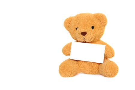 Teddy Bear with blank isolated on white