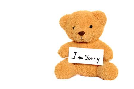 Teddy Bear with