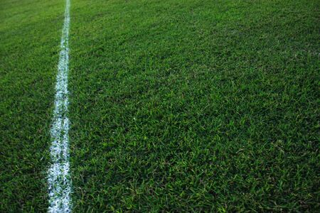 sideline: The sideline of a football field