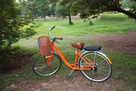 The isolate bicycle is standing in the garden photo