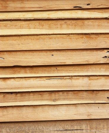 bark background photo