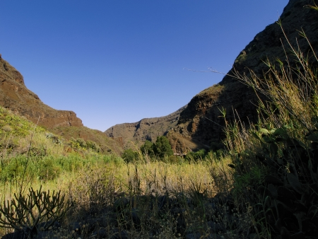 Barranco de Guayadeque, Gully on Gran Canaria, Canary Islands, Spain Stock Photo - 13805046