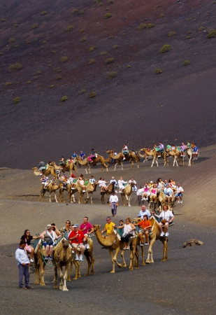 Camel Ride in Timanfaya National Park, Lanzarote, Canary Islands, Spain