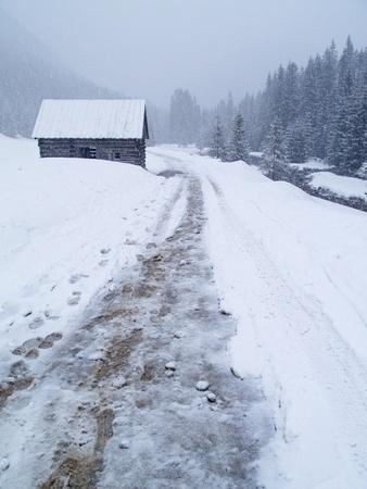 photo was taken in Tatra Mountains, Poland photo