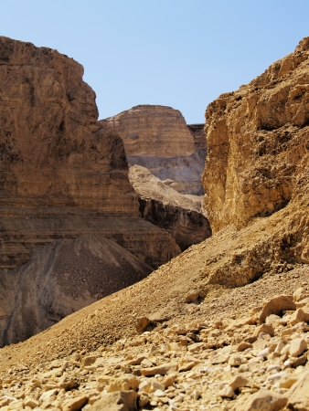Negev Desert, Israel photo