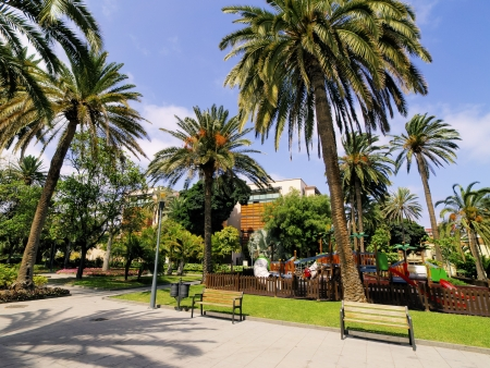 Park in Las Palmas, Gran Canaria, Canary Islands, Spain photo