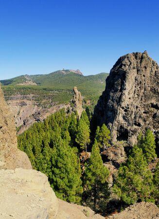 Gran Canaria, Canary Islands, Spain photo