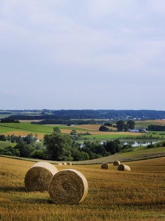 Suwalszczyzna, Poland photo