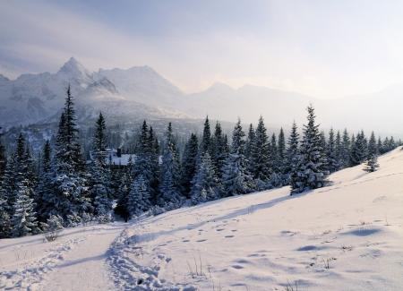 Winter, Tatra Mountains, Poland