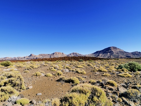 Teide National Park, Tenerife, Canary Islands, Spain Stock Photo - 16679255