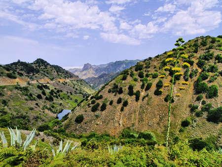 Vallehermoso, La Gomera, Canary Islands, Spain photo