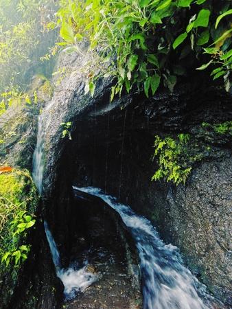Nacientes de Marcos y Cordero - hermoso sendero en la isla de La Palma, pasando a lo largo de conducción de agua en la reserva natural Los Tilos, La Palma, Islas Canarias, España Foto de archivo - 21420327