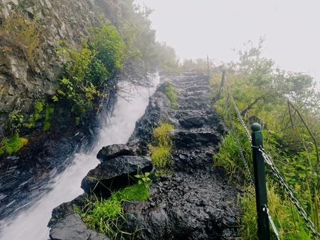 Nacientes de Marcos y Cordero - hermoso sendero en la isla de La Palma, pasando a lo largo de conducción de agua en la reserva natural Los Tilos, La Palma, Islas Canarias, España Foto de archivo - 21420318
