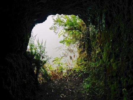 Nacientes de Marcos y Cordero - hermoso sendero en la isla de La Palma, pasando a lo largo de conducción de agua en la reserva natural Los Tilos, La Palma, Islas Canarias, España Foto de archivo - 21420321