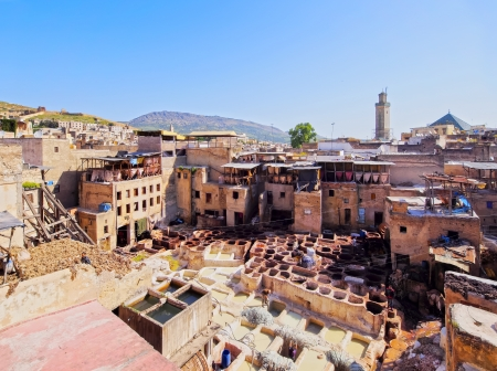 Famous Tannery inside the old medina in Fes, Morocco, Africa