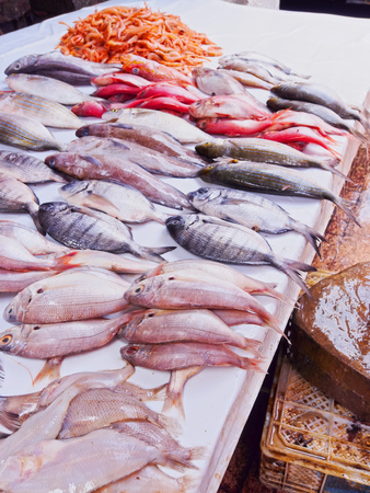 Fresh Fishes on the Market of the old medina in Essaouira, Morocco, Africa Archivio Fotografico