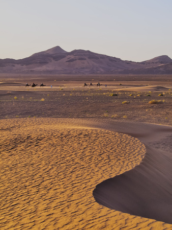 Beautiful landscape of Zagora Desert in Morocco, Africa photo