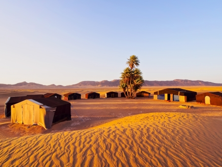 berber: Oasis and a camp on Zagora desert in Morocco, Africa
